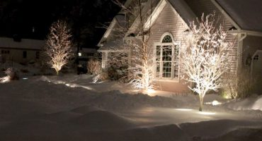 City Services - Landscape Lighting